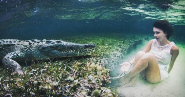 Μοντέλο κολυμπάει με κροκόδειλο! Δείτε το βίντεο