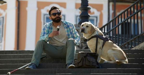 Ο σκύλος-οδηγός αυτού του τυφλού άνδρα φεύγει για λίγο από κοντά του. Μακάρι όμως να μπορούσε να δει γιατί… (Βίντεο)