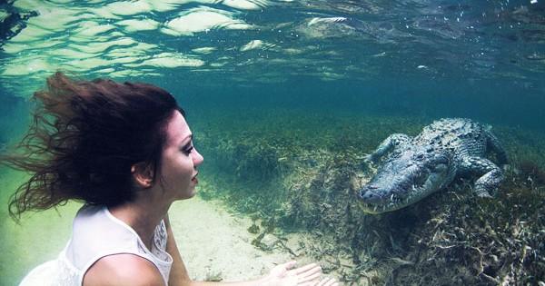 Μοντέλο ποζάρει υποβρυχίως δίπλα σε… κροκόδειλους! (Βίντεο)