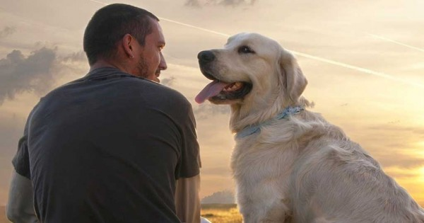 «Σκύλος: ο φίλος της καρδιάς»