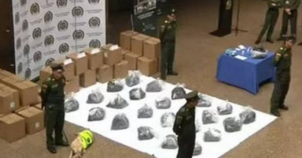 Κολομβία: Ένα λαμπραντόρ χάλασε τα σχέδια των βαρόνων της κοκαΐνηςΚολομβία: Ένα λαμπραντόρ χάλασε τα σχέδια των βαρόνων της κοκαΐνης