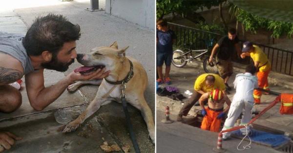 Και όμως! Αυτή είναι η ελληνική ομάδα που σώζει εγκλωβισμένα ζώα! (Βίντεο)