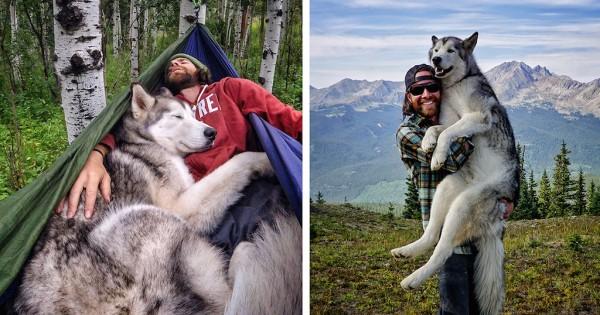 Παίρνει το λυκόσκυλό του σε επικές εξορμήσεις γιατί μισεί να βλέπει τα σκυλιά κλεισμένα μέσα! (Εικόνες)