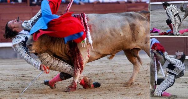 Μία εικόνα 1000 λέξεις: Όταν στο τέλος νικάει ο ταύρος (Βίντεο)