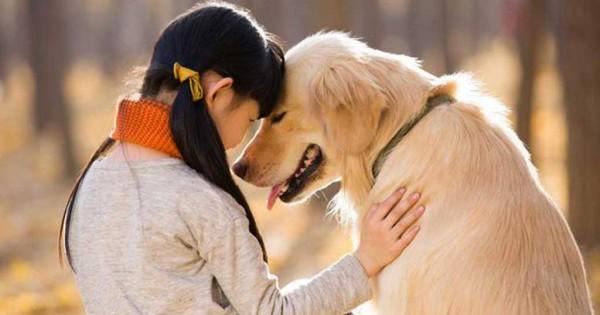 18 φωτογραφίες που αποδεικνύουν ότι ο σκύλος είναι ο καλύτερος φίλος του ανθρώπου (Εικόνες)