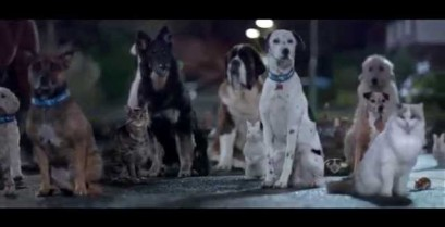 Διαφήμιση για τη μεταχείριση των ζώων από τον οργανισμό Blue Cross (Βίντεο)