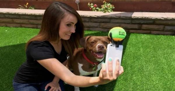 Το νέο εξάρτημα για… σκυλο-selfie που θα κάνει πάταγο! [βίντεο]
