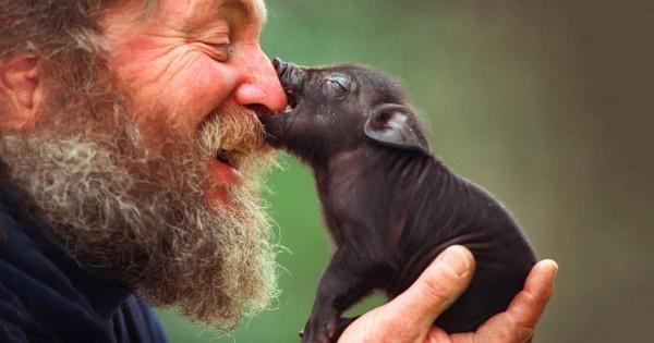 14 γλυκές φωτογραφίες με ζώα που θα σας κάνουν να χαμογελάσετε