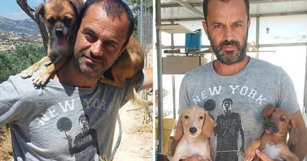 Ρεπορτάζ της Daily Mail για τον Έλληνα οδοντίατρο-σωτήρα των αδέσποτων στην Κρήτη (Εικόνες)
