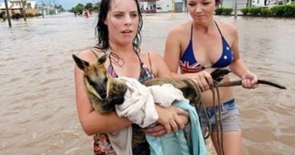 24 άνθρωποι κάνουν απίθανα πράγματα για ζώα. Το 16 θα σας συγκινήσει! (Εικόνες)