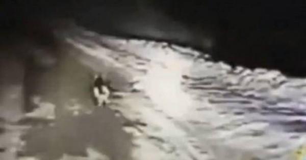 Ένας αστυνομικός είδε ένα σκυλί στη μέση του πουθενά και το ακολούθησε… Δείτε που τον οδήγησε [βίντεο]