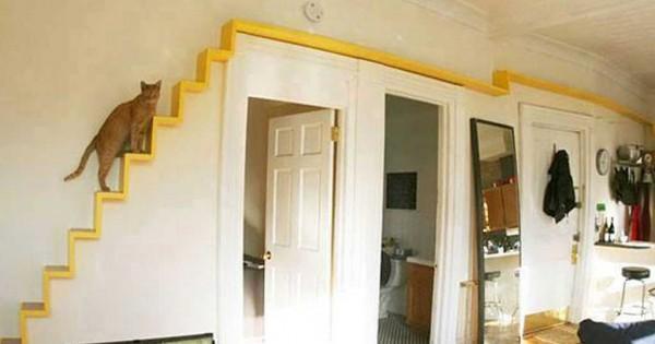 Σπίτια και έπιπλα προσαρμοσμένα για… κατοικίδια! (Εικόνες)