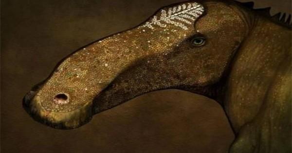 Ένα ακόμη άγνωστο είδος δεινοσαύρων εντοπίστηκε στη Μοντάνα των ΗΠΑ [φωτό]