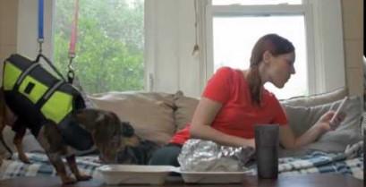 Σκύλος σε επικίνδυνη αποστολή (Βίντεο)
