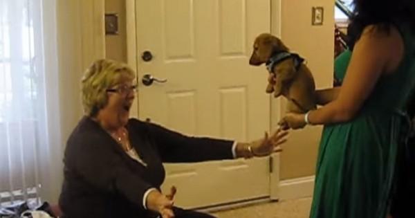 Μια μητέρα, τα παιδιά της, μια έκπληξη και πολλή χαρά! (Βίντεο)