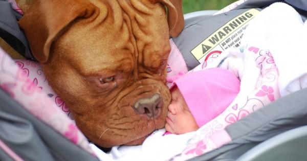 Αποφύγετε αυτά τα 7 λάθη όταν «συστήνετε» το μωρό