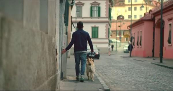 Αφιέρωσε 1 λεπτό για να δεις πόσο σε αγαπάει ο σκύλος σου! (Βίντεο)