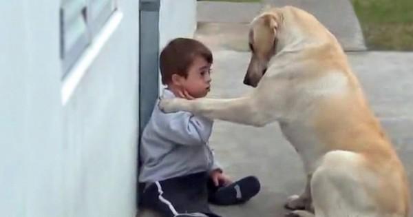 Όταν ο γιος της χρειάστηκε ένα φίλο, αυτός ο σκύλος στάθηκε στο πλευρό το, με τον πιο απίστευτο τρόπο. (Βίντεο)