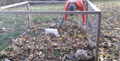 Το παιχνιδιάρικο κουνέλι (Βίντεο)
