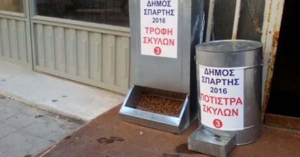 Ταΐστρες και ποτίστρες για τα αδέσποτα τοποθέτησε ο Δήμος Σπάρτης.