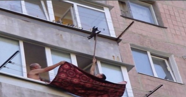 Δύο άντρες προσπαθούν να σώσουν ένα γατάκι και γίνονται ήρωες της ημέρας (Βίντεο)