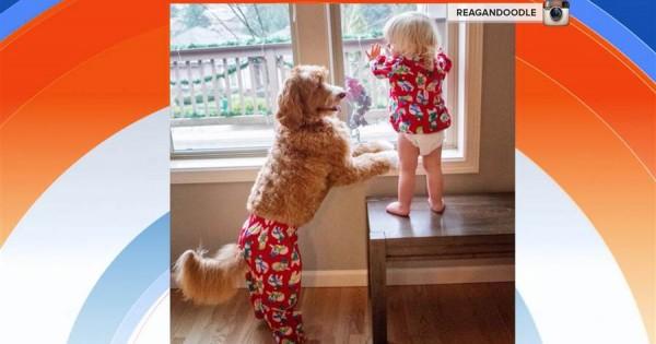 Το απίθανο πιτσιρίκι και ο σκύλος του που φοράνε τα ίδια ρούχα! (Βίντεο)