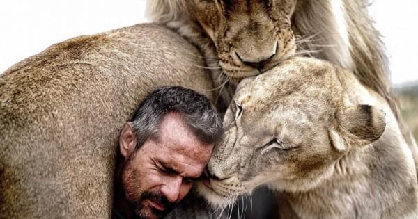 Τα λιοντάρια που λατρεύουν τον άντρα που αφιέρωσε τη ζωή του για να τα σώσει (Βίντεο)