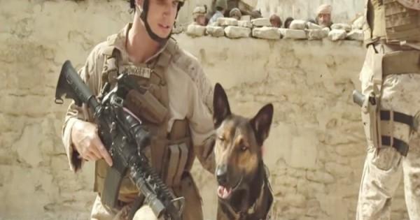 Max ,Η Αληθινή Ιστορία Του Ήρωα Σκύλου Πεζοναύτη Στο Αφγανιστάν (Video)