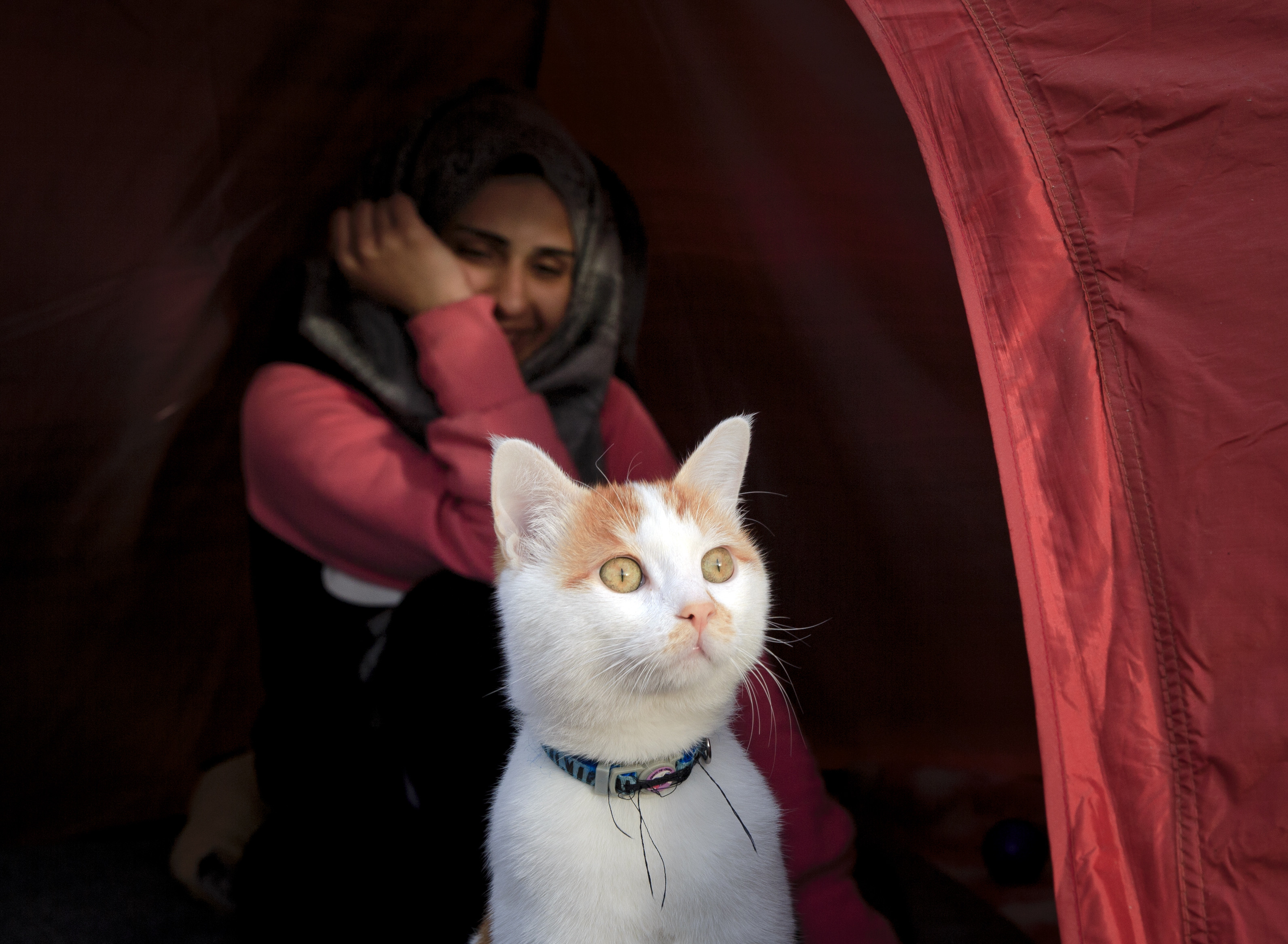 In this picture taken on March 6, 2016, Israa Abud smiles as family cat Taboush peers from the tent in Idomeni, Greece, near the border with Macedonia.  Nearly 70 years after Israa Abud al Hosary's grandparents fled Palestine, she is reliving their fate, forced to leave home with nearly nothing and start again from scratch in a foreign land. (AP Photo/Vadim Ghirda)