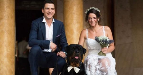 Η Βιβή και ο Σπύρος πήγαν στον Γάμο τους μαζί με τον Σκύλο τους! ΠΡΟΣΕΞΤΕ το Λαιμό του!
