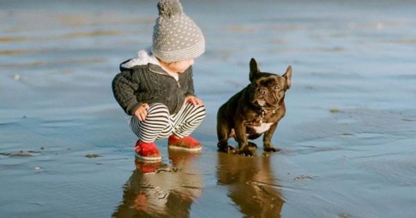 28 Φωτογραφίες που αποδεικνύουν ότι ο καλύτερος φίλος του μωρού είναι ένας σκύλος.