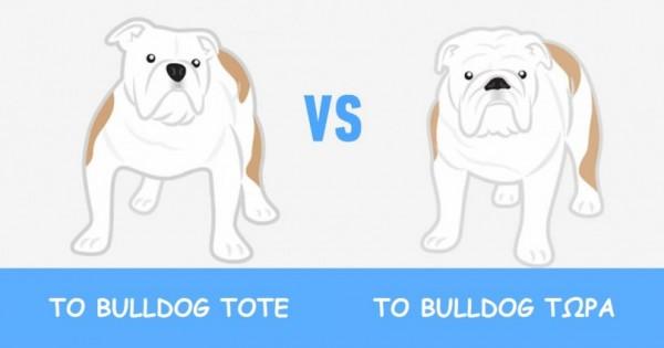 Δείτε πώς άλλαξαν 8 δημοφιλείς Ράτσες Σκύλων μετά από 100 Χρόνια Εκτροφής… (Εικόνες)