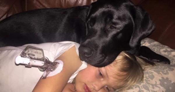 Ο Σκύλος της ήταν Ανήσυχος στη Μέση της Νύχτας. Όταν Έτρεξε στο γιο της, δεν Πίστευε στα Μάτια της! (Εικόνες)