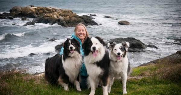 Μια ετοιμοθάνατη γυναίκα αποφάσισε να βρει νέο σπίτι για τους σκύλους της… (Εικόνες)
