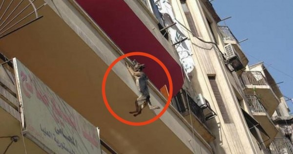 Κρεμόταν από το Μπαλκόνι για 5 Ώρες. Όταν τη Βρήκαν οι Διασώστες, Δεν Πίστευαν στα Μάτια τους! (Εικόνες)