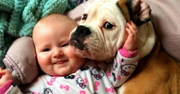 Παιδιά και σκυλιά! Έρωτας με την πρώτη ματιά [photos]