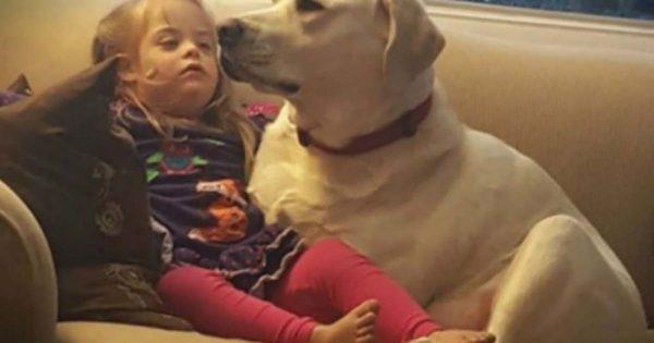 Όταν ο σκύλος τους το έκανε ΑΥΤΟ έμειναν έκπληκτοι. Σήμερα το θεωρούν θεϊκή παρέμβαση!!!