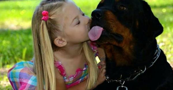 Μην δαιμονοποιείς το σκύλο άνθρωπε. Όταν σε γνώρισε έγινε φονιάς..
