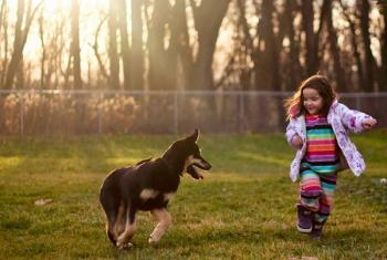σκύλος και παιδί σκύλοι μικρά παιδιά