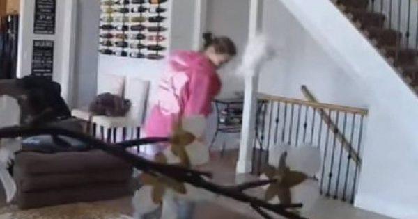 Το «ιπτάμενο» κουτάβι – Δείτε το βίντεο