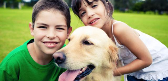 σκύλος και παιδί Σκύλος παιδιά παιδί