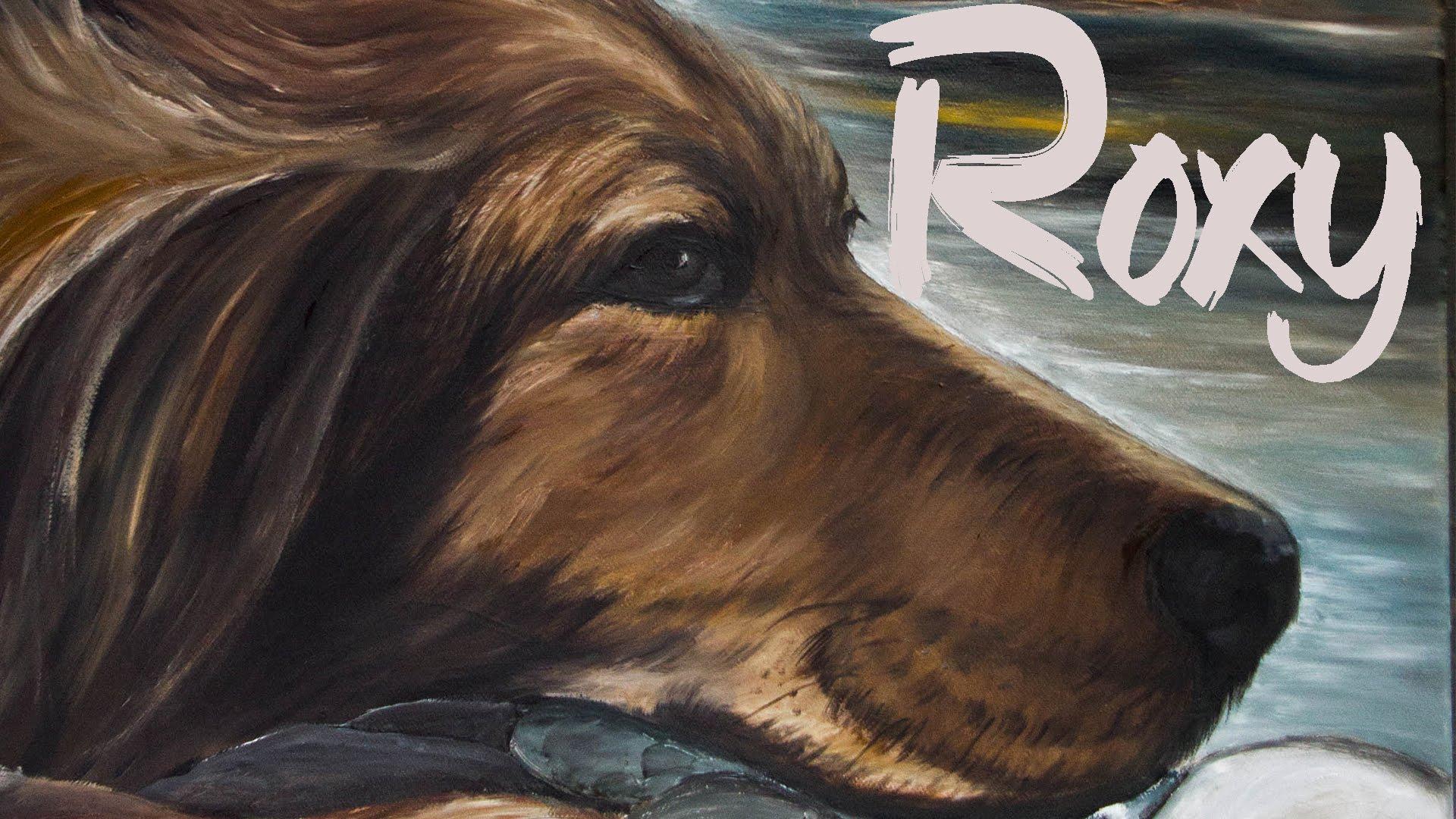 ταινία μικρού μήκους αδέσποτα ζώα Roxy