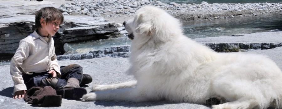 ταινία με σκύλο ταινία