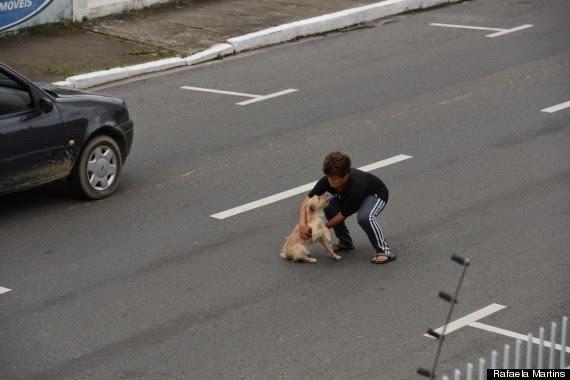 Σκύλος διάσωση σκύλου