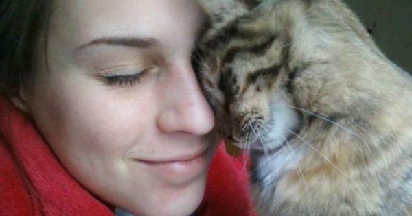 11 συμπεριφορές με τις οποίες οι γάτες μας εκφράζουν την αγάπη τους