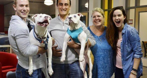 Ζευγάρι οδηγεί 32 ώρες για να υιοθετήσει ένα σκύλο που έχει την ίδια πάθηση με τον δικό τους!