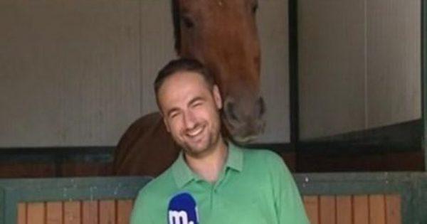Το άλογο που εpωτεύτηκε τον δημοσιογράφο!