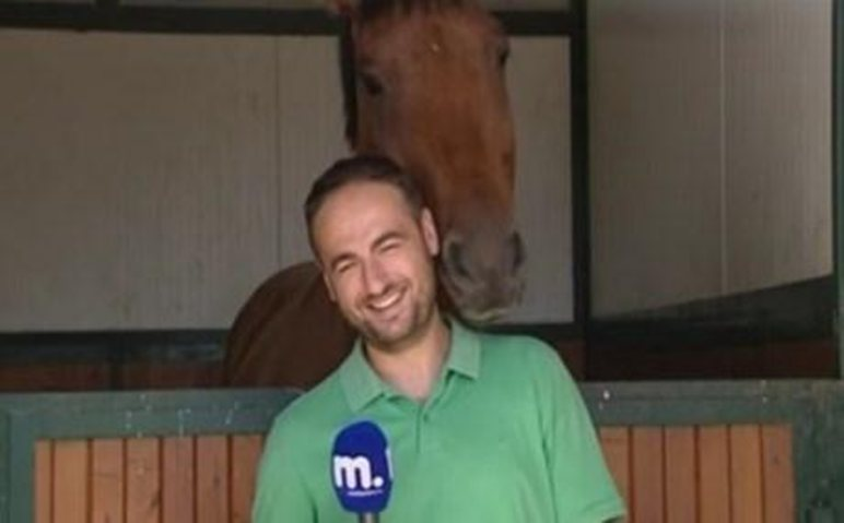 δημοσιογράφος άλογο