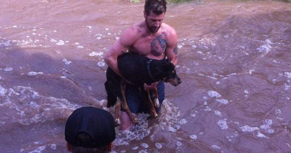 Ένας άγνωστος έπεσε χωρίς δεύτερη σκέψη στα νερά του ποταμού για να σώσει τον σκύλο μου!