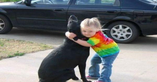 Κοριτσάκι όταν πέθανε ο σκύλος του έστειλε γράμμα στον Θεό… και εκείνος της απάντησε